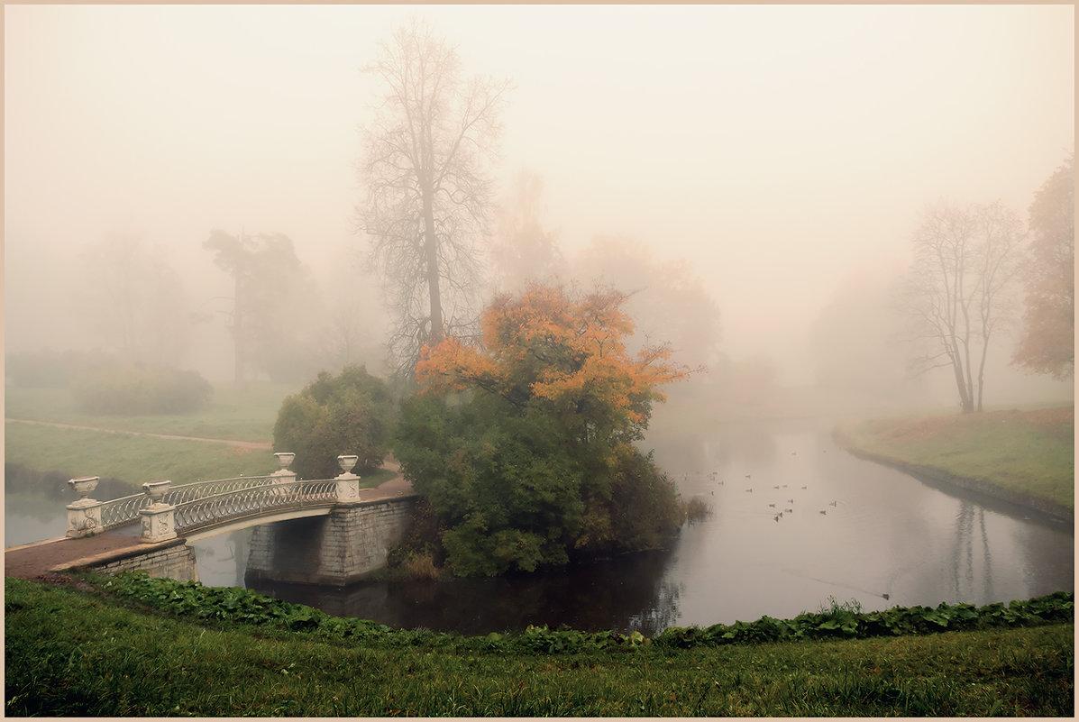 Туманное настроение - Владимир Миронов