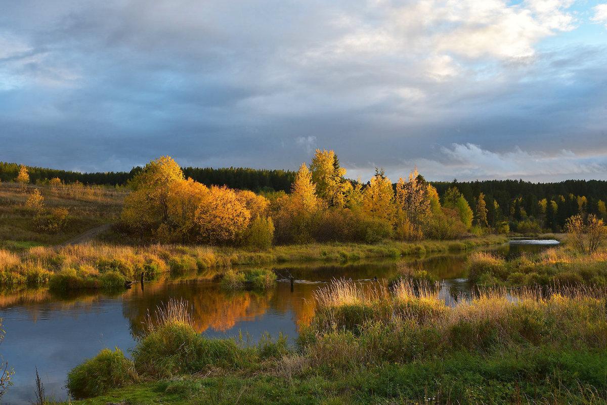 Осень на реке Турья. - Наталья