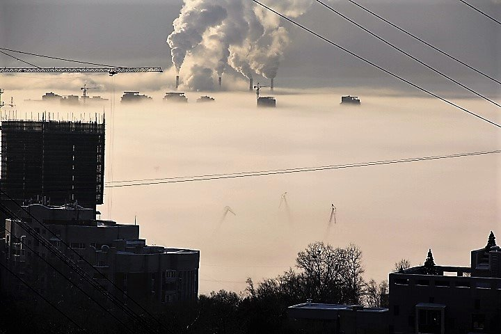 Туман. - Ирина Горовик