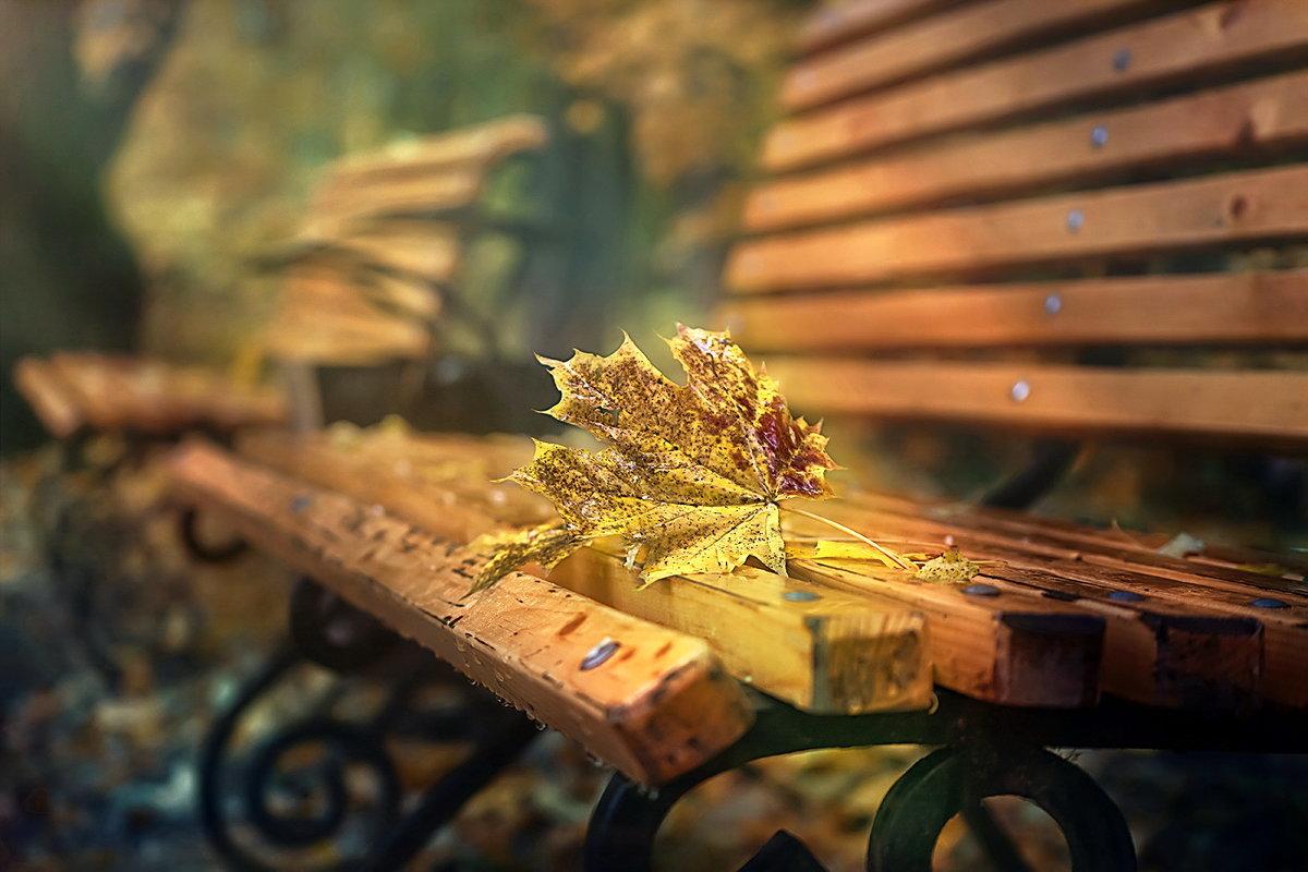 Осеннее настроение... - GaL-Lina .