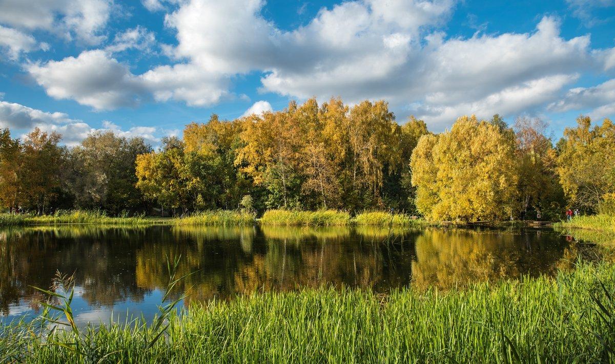 Октябрь в Ботаническом саду - Александр Орлов