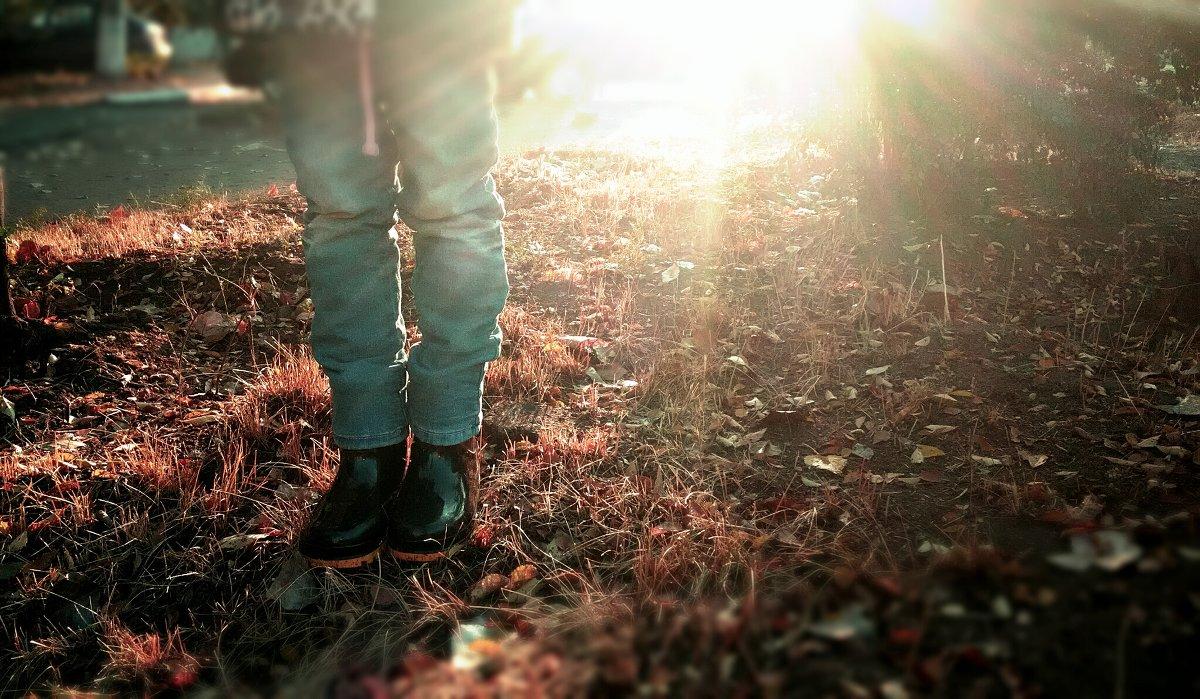 Осенние лучи - Наталья Мицура