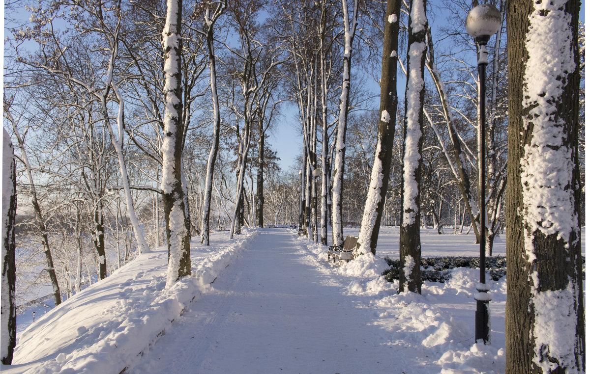 Мое замечательное утро в парке - Сергей