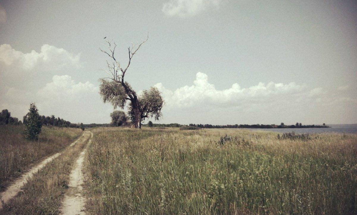 Проселочная дорога - Анастасия