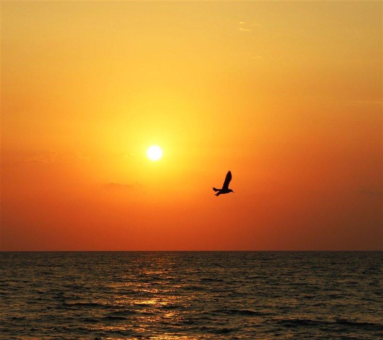 Закат над морем - Любовь ***
