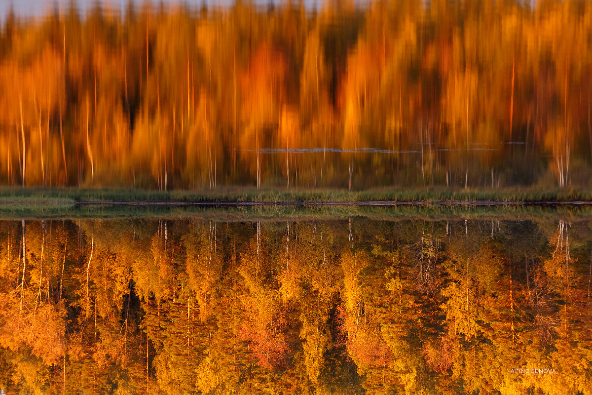 Осенняя палитра - Татьяна Афиногенова