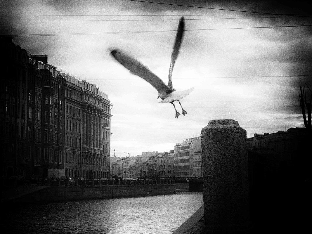 Ощущение - Elena Gontarenko