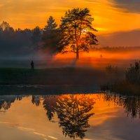 Туманный вечер в парке. :: Фёдор. Лашков