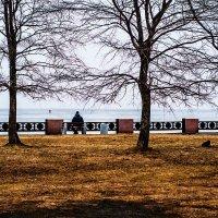 Между летом и зимой... :: Евгений Мелт