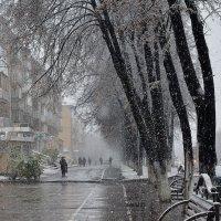 У природы нет плохой погоды... :: Сергей Коновалов
