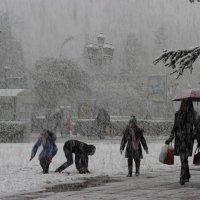 Первый снег :: Ирина Гайворонская
