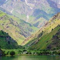 весна в Узбекистане :: Наталья и Юрий Родионовы