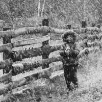 Первый снег сентября :: Юлия Мухина