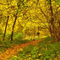 Осенний пожар :: Ната Еременко