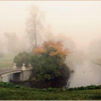 Туманное настроение :: Владимир Миронов