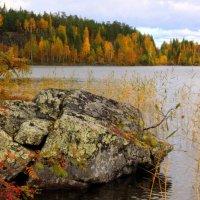 На озере осень... :: Галина Полина