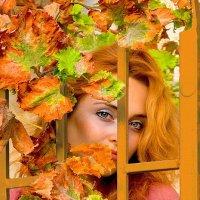 В калитку заглянула Осень :: Olga Vaislev