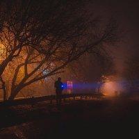 туман :: Ольга Мазлова
