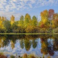 осень :: Oleg