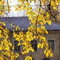 И дождь, и солнце :: Фотогруппа Весна.