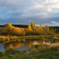 Осень на реке Турья. :: Наталья