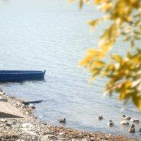 Осень в Абрау :: Дмитрий Переяслов