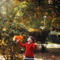 Осень :: Елена Деркач