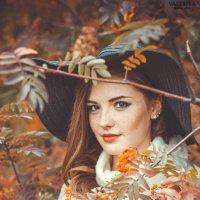 Рябина :: Валерия Photo