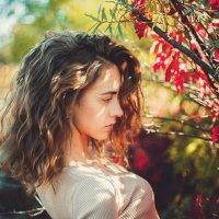 Тише, не шумите листья. :: Саша Дикарева