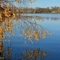 Гляжу в озера синие :: Леонид Иванчук