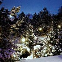 загородная снежная ночь :: Алексей Совалев