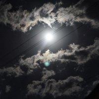 Лунный свет -самый удивительный свет в мире :: Тамара
