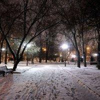 Заметает зима, заметает ... :: Лариса Корженевская