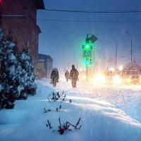 Первый зимний снег :: Михаил Фенелонов