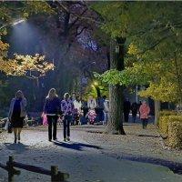 В парке. :: Андрей Козлов