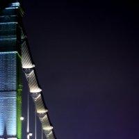 Ночной мост :: Маргарита Чубукова