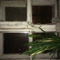 Ночь за окном :: Светлана Владимировна Сидорова