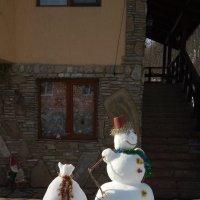 снеговик :: надежда