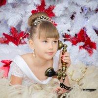 Новогодние праздники :: Фотограф Наталья Рудич Новацкая