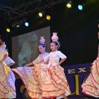 Парагвайский танец с кувшинами :: Vitalet