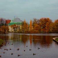 Золотой Таврический сад :: Александра Кускова