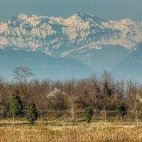 Весенние горы. :: Вера Катан