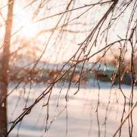 Весна :: Ирина Лондратова