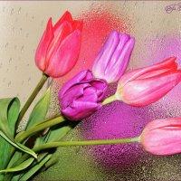Нежность весны :: °•●Елена●•° Аникина♀