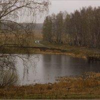 Осенняя  весна :: Алена Афанасьева