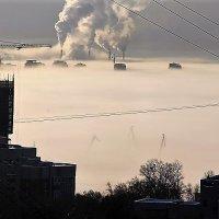 Туман. :: Ирина Горовик
