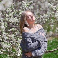 Весна в моем городе :: Сергей
