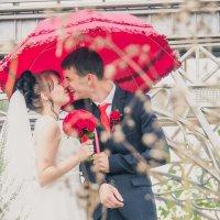 Свадьба - это весело! :: Zhenia Lisin
