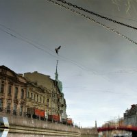отражение1 :: Игорь Свет