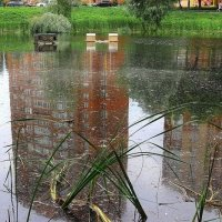 Городское озеро :: Starik Efimov